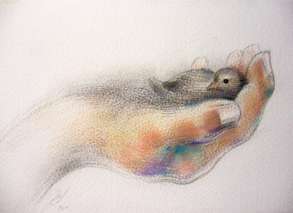 Bird In The Hand by Jamie Cahlil
